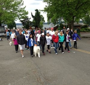 National Alliance on Mental Illness Statewide Walk 2013